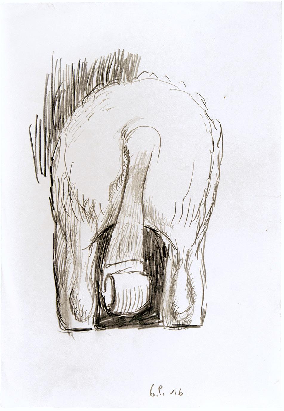 pietr-geranzani-studio-per-coda-di-cavallo-1